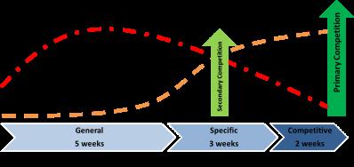 block-periodization2